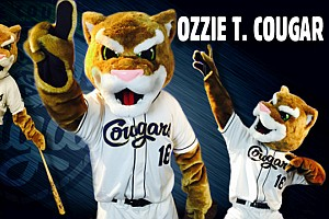 Ozzie the Cougar